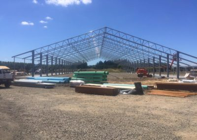 Largest arena frame is up