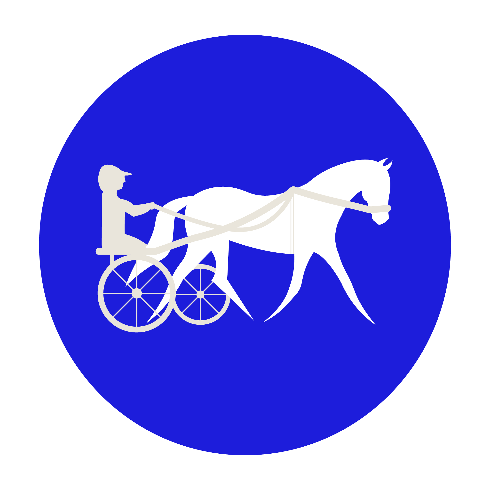 Carriage Driving