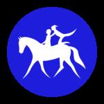 Vaulting icon