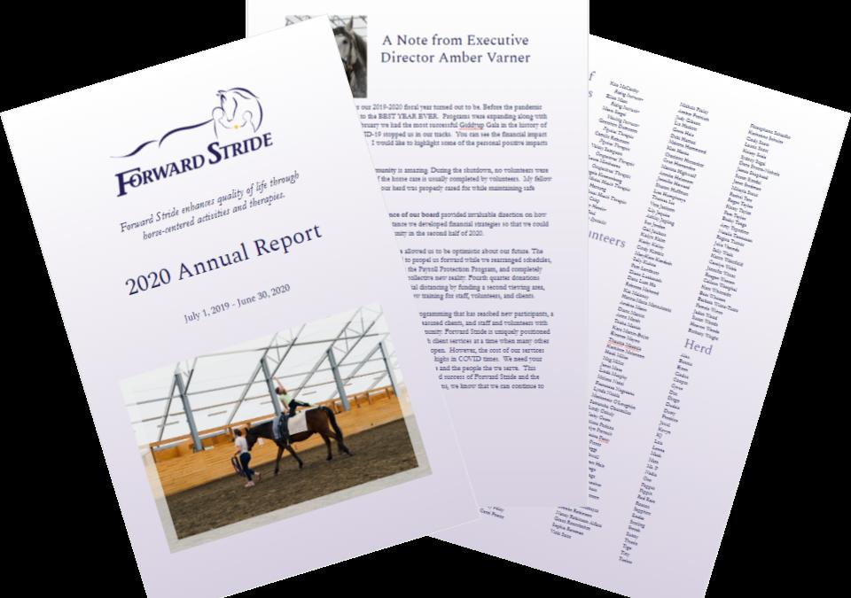 Forward Stride 2020 Annual Report